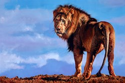 African King by Pip McGarry - Varnished Original Painting on Stretched Canvas sized 36x24 inches. Available from Whitewall Galleries